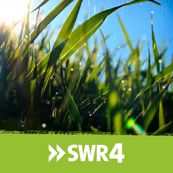 SWR1 RP Anstöße | SWR4 Morgengruß