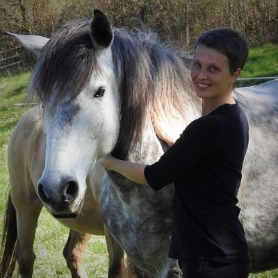Horsefulness Training Podcast