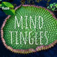 Mind Tingles podcast