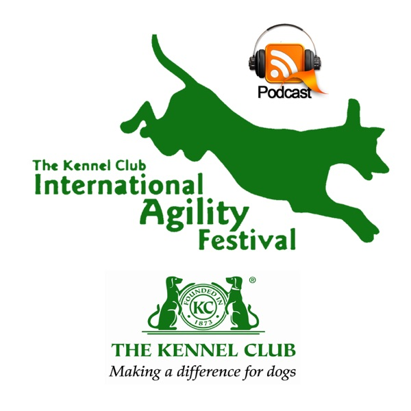 International Agility Festival 1