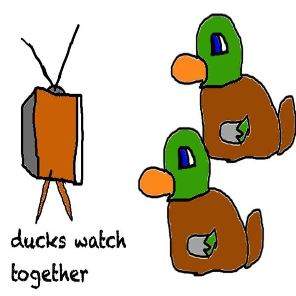 Ducks Watch Together