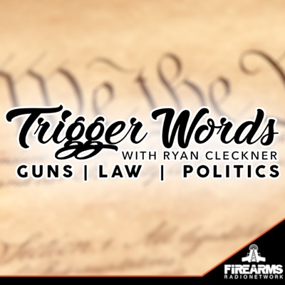 Trigger Words 021 – The 3D Firearms Prohibition Act H.R. 7115
