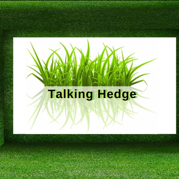 The Talking Hedge Podcast