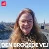 Den Brogede Vej artwork