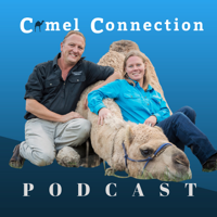 Camel Connection Podcast podcast