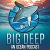 Big Deep - An Ocean Podcast artwork