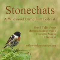 Stonechats from Wildwood Curriculum podcast