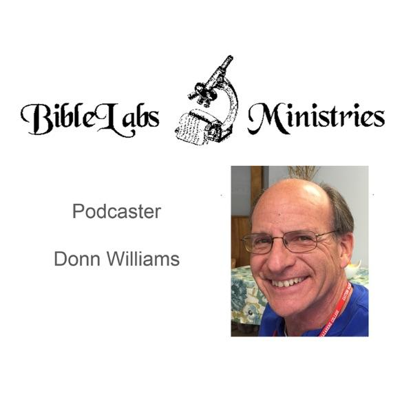 BibleLabs Ministries