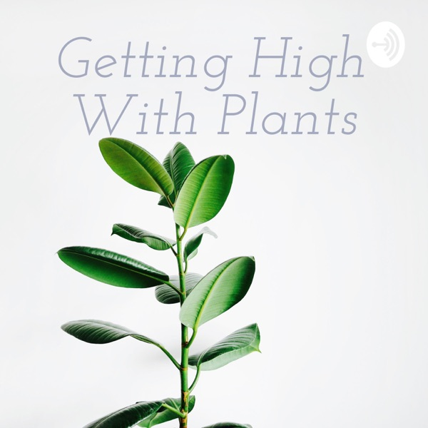 Getting High With Plants