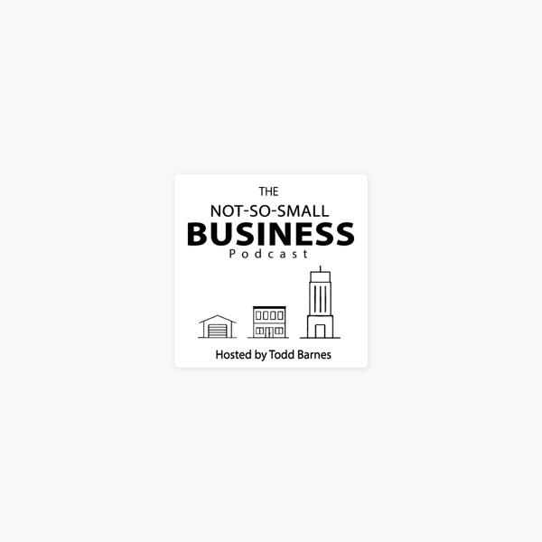 Not-So-Small Business Podcast: Leslie Bohl- Journalist