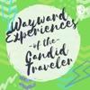 Wayward Experiences of the Candid Traveler artwork
