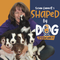 Shaped by Dog with Susan Garrett podcast