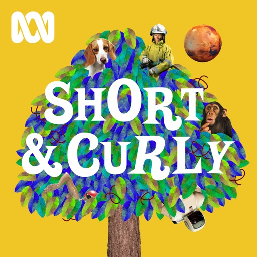 Cover image of Short & Curly