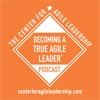 Becoming A True Agile Leader(tm) artwork