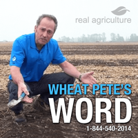 Wheat Pete's Word podcast