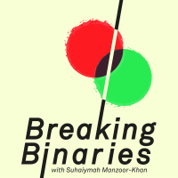 Podcast cover art for Breaking Binaries