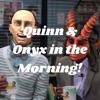 Quinn & Onyx in the Morning! artwork