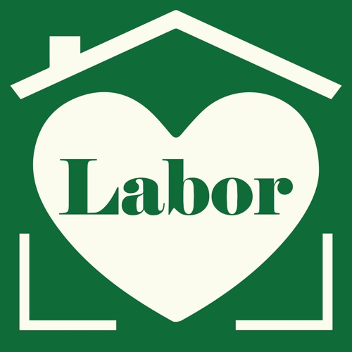 Labor: The social science on women, work, and motherhood Image
