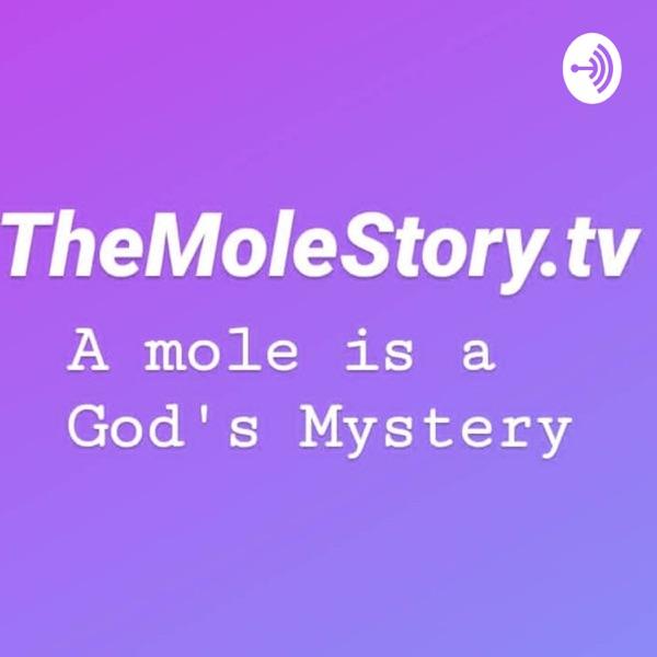 TheMoleStory