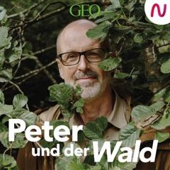 Peter Wohlleben / GEO / Audio Alliance