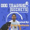 Dog Training Secrets  artwork