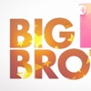 Big Brother Ted Talks artwork