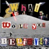 What Would You Believe? artwork