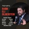 Daily Insights by Rabbi Eli Silberstein artwork