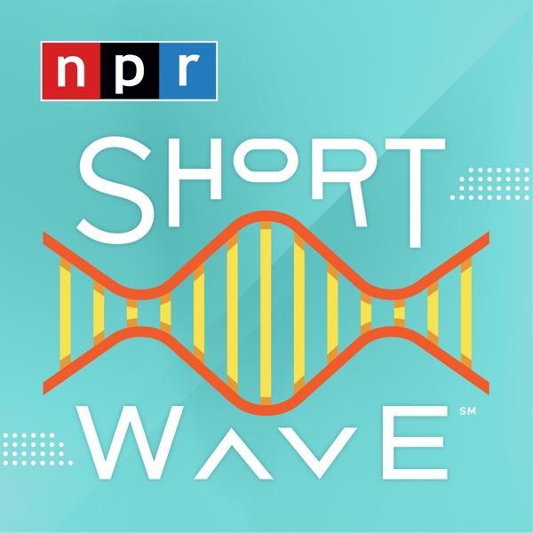 Short Wave banner backdrop