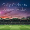 Gully Cricket to Bouncy Wicket artwork