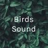 Birds Sound