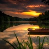 Calm music for focus, relaxation and meditation