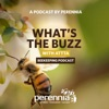 What's the Buzz with ATTTA Beekeeping Podcast artwork