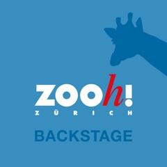 Zoo Zürich Backstage
