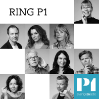 Ring P1 - 020-22 10 10 podcast