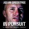 Adam Greentree: In Pursuit artwork