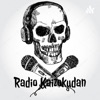 Radio Kaizokudan artwork