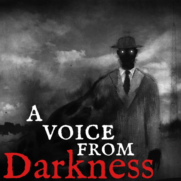 A Voice From Darkness image