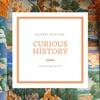 Curious History  artwork
