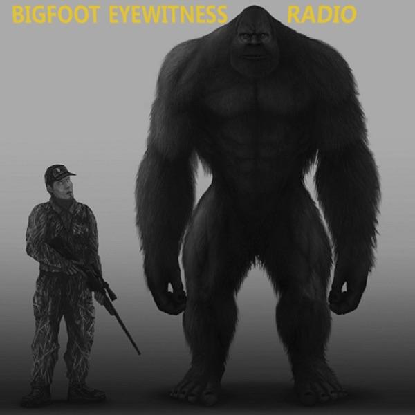 Bigfoot Eyewitness Radio Artwork