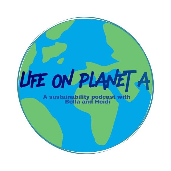 Life on Planet A Artwork