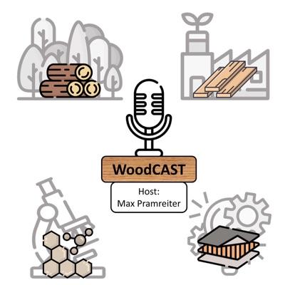 Dr. Müller: Holz im Fahrzeugbau (WoodC.A.R.) Teil 2