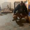 Let'em Roll Kennels, Talking Dog's  artwork