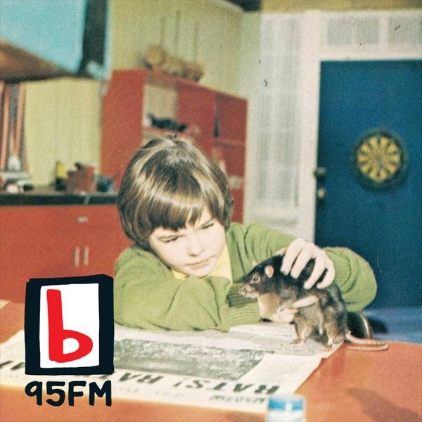 95bFM: Psychic Glands Artwork