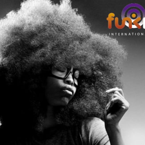 Funk It Up On RTE Pulse