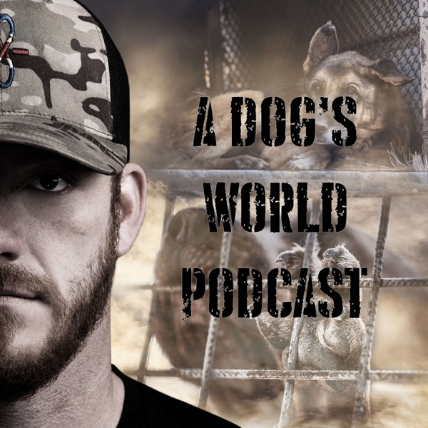 A Dog's World - Breaking The Chains Artwork