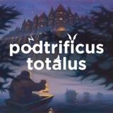 The Quidditch Final