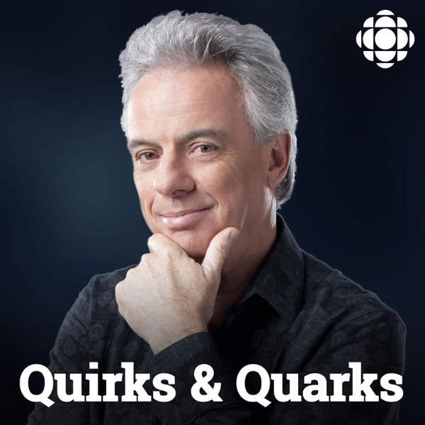 Quirks and Quarks from CBC Radio image