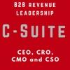 B2B Sales & Marketing Leadership - for B2B Companies - CXO - VC - Startup - Success - SaaS artwork