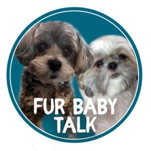 Fur Baby Talk